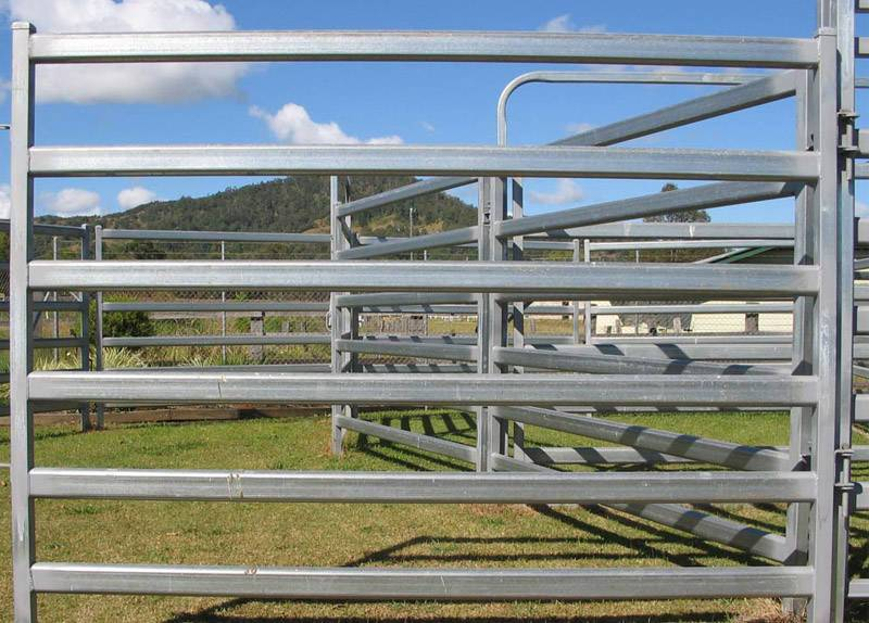 Cattle Fence&Sheep Fence